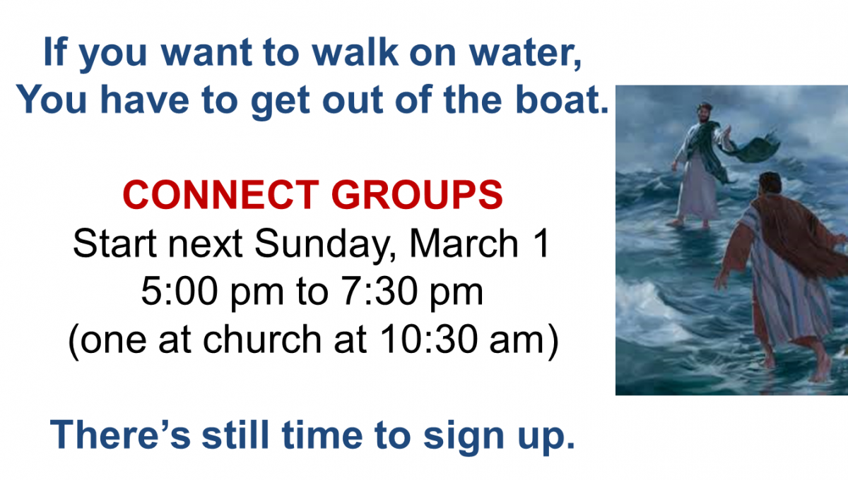 Spring Connect Groups